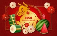 backdop da nang 4